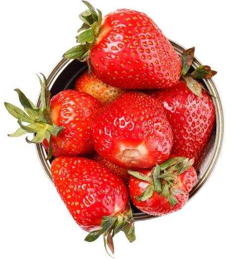 Freeze Syrup - Erdbeere